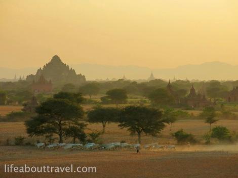 Bagan-02-IMG_2384