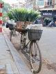hanoi_IMG_7941
