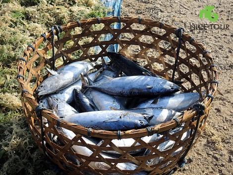 fishing tour nusa lembongan 9